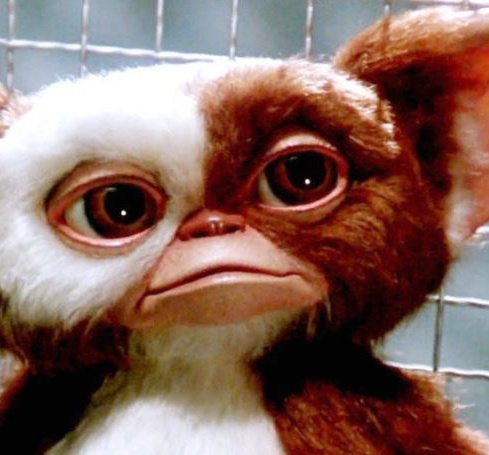 Film still from <em>Gremlins</em>