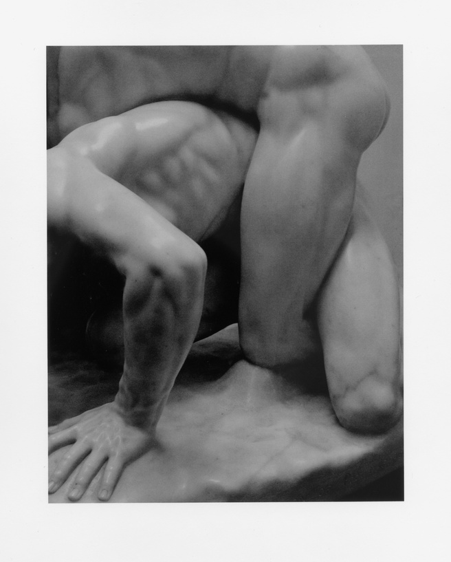 Peter Peryer <em>Wrestlers</em> 2005. Courtesy of the artist