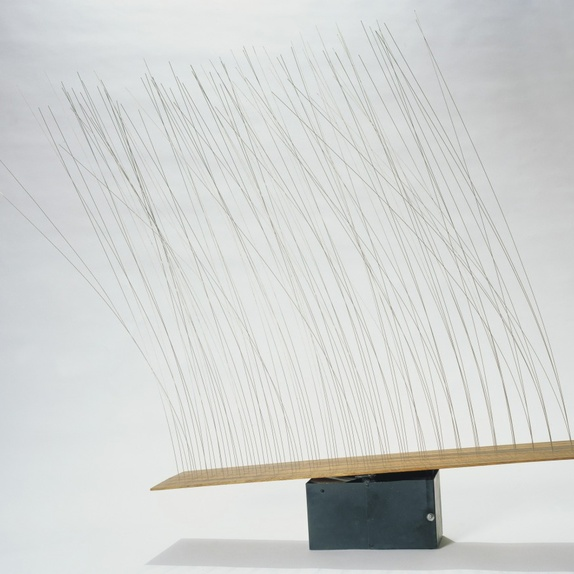 Grass, 1965