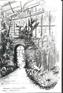 Fernery - Pukekura Park, New Plymouth. By Maurice Betts
