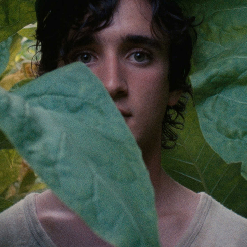 Film still from <em>Happy As Lazzaro</em>